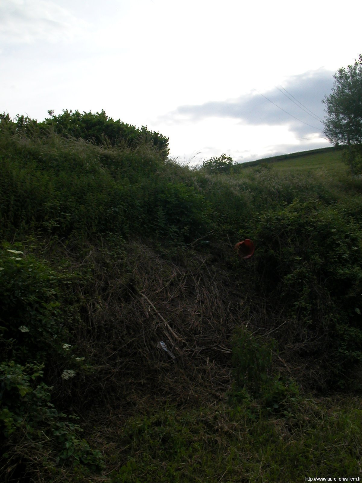 Accident du samedi 24 mai 2008